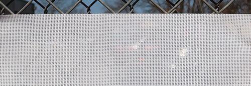 mesh-sample